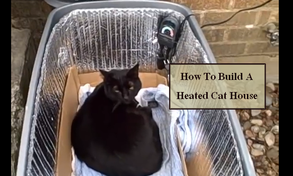 Diy cat house heater