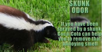 coca_cola3