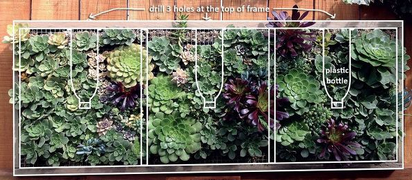 Pallet_Wood_Vertical_Planting_With_Succulents1